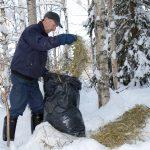 Det blir inget förbud mot utfodring av vilt. Det står klart efter beslut i riksdagen. Foto: Olle Olsson