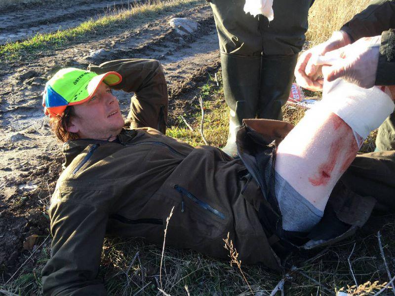 Jakt pa skadad bjorn avbrots