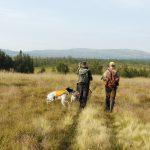 Företrädarna för Jägareförbundet uppmanar i debattartikeln Jordbruksverket att genomföra de ändringar av föreskrifterna som krävs för att jägare bosatta i Sverige ska ha företräde till fjälljakten. Foto: Jan Henricson