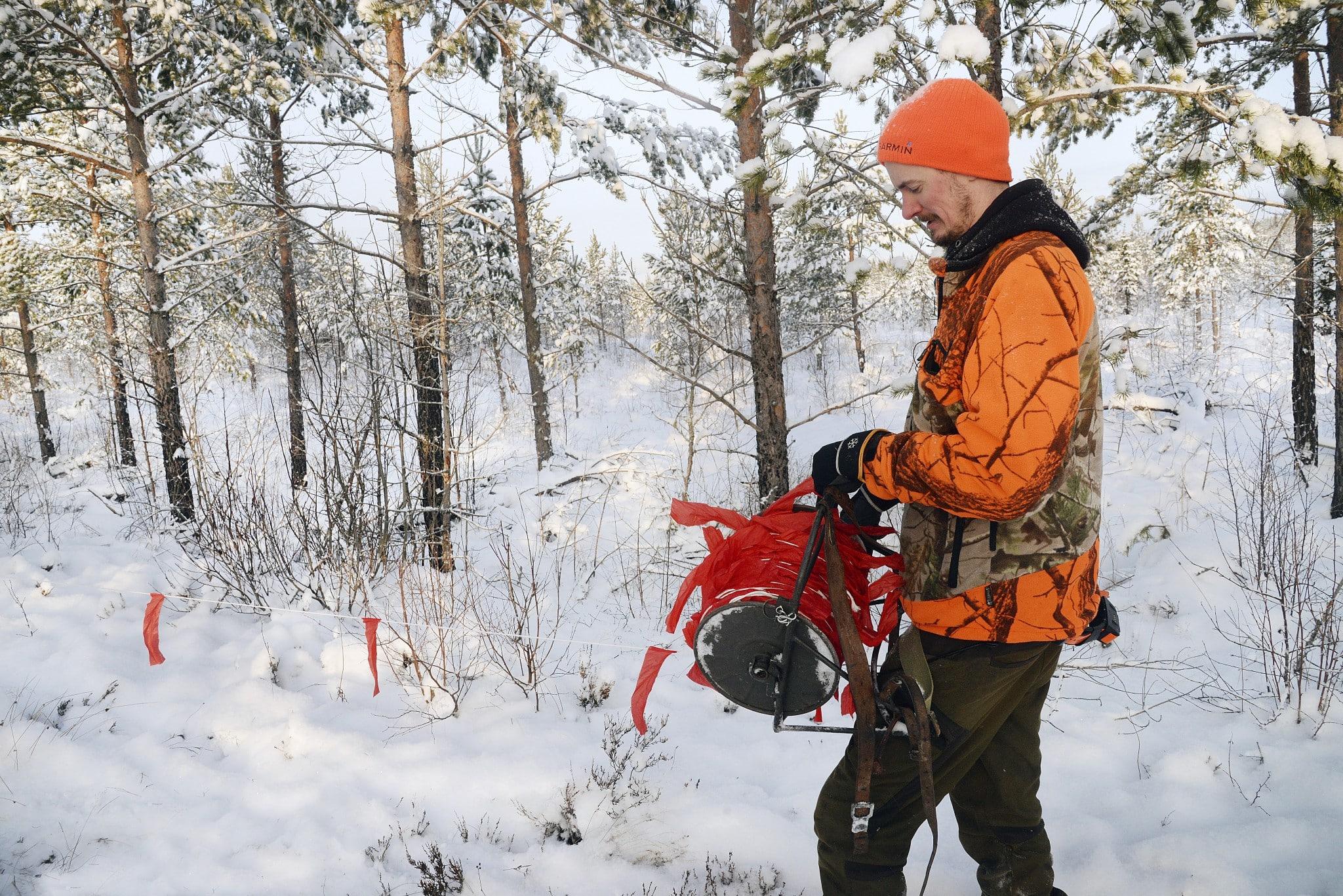 Lapptyg kan vara ett bra hjälpmedel för en effektiv vargjakt. Foto: Lars-Henrik Andersson