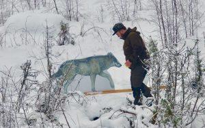 Skyttar tränade på skyttet inför vargjakten som börjar på tisdag. Foto: Jonas Eriksson