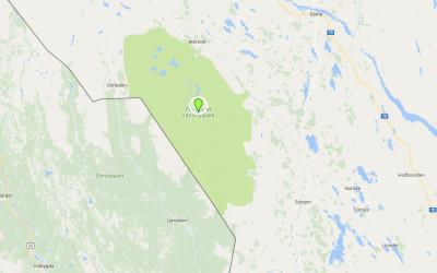 Vargen hittades i närheten av Fulufjället.