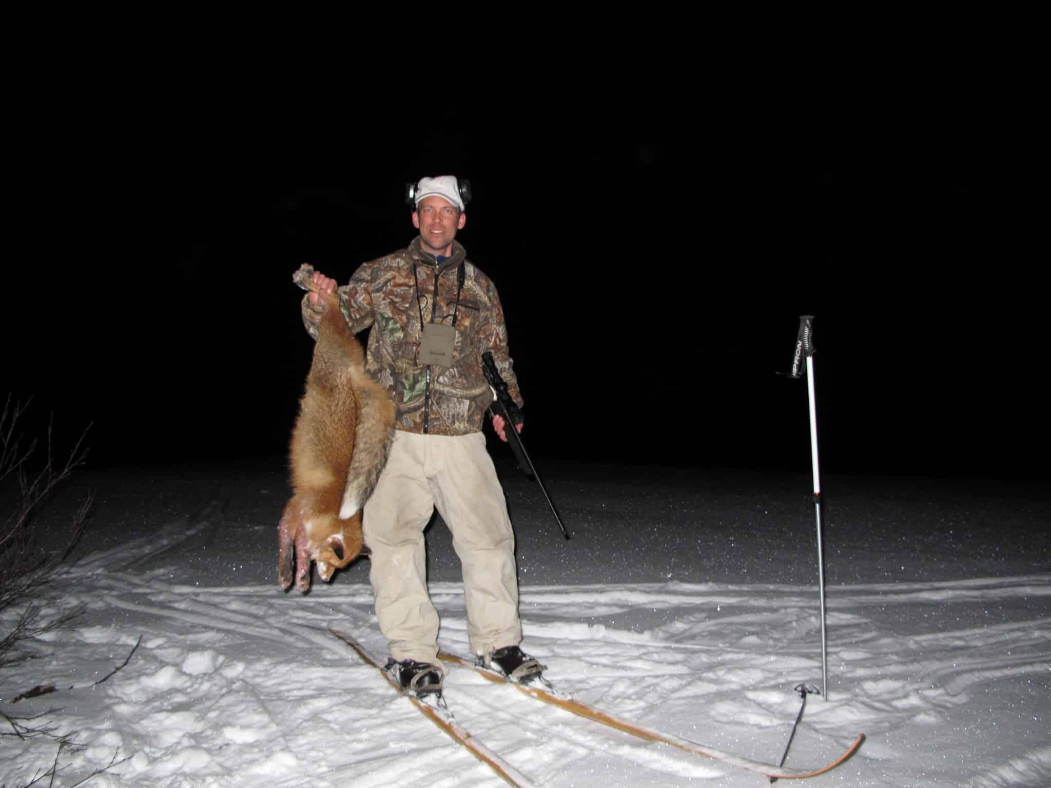 Ett lockpass efter ripjaktsdagens slut kan förstås också ge räv. Har man sett spår som pekar mot ett särskilt område kan det till och med vara effektivt.