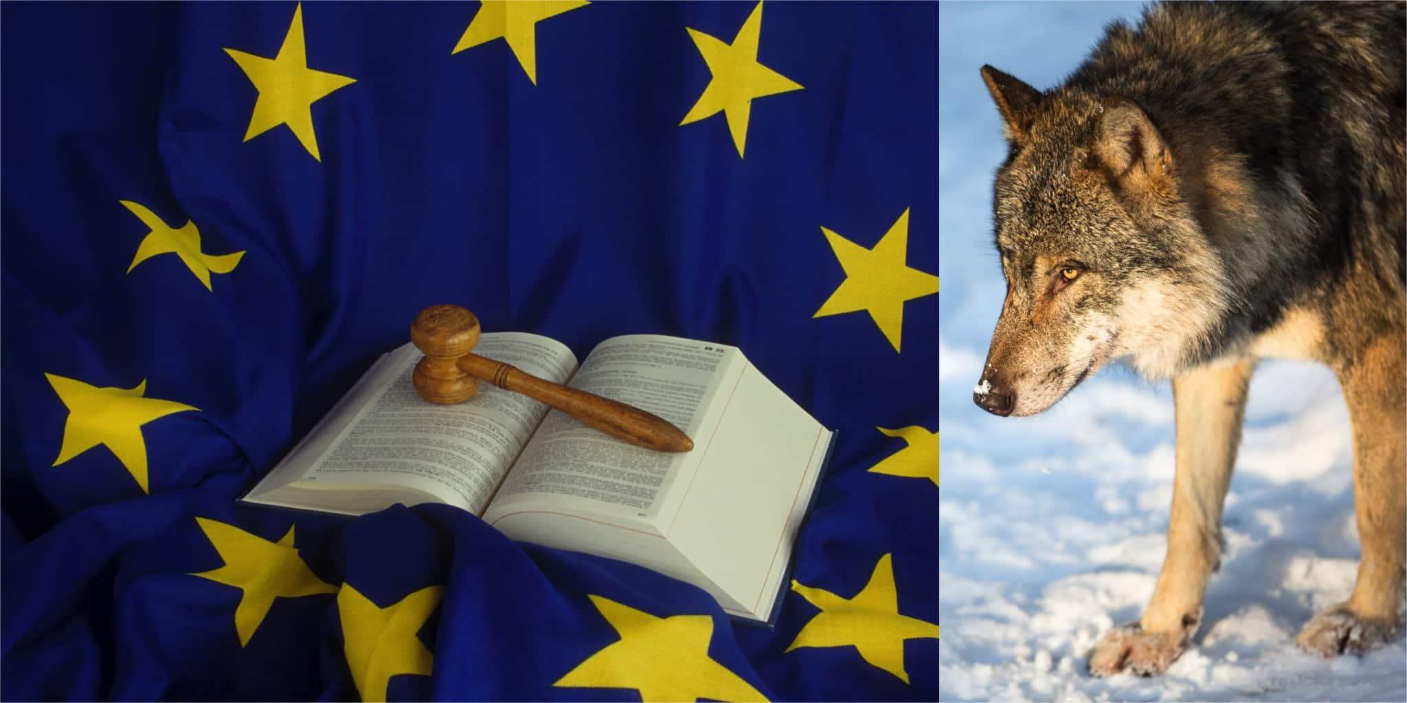 EU-domstolen ska svara allmänt på den finska domstolens förfrågan, men först ska en generaladvokaten lämna förslag till avgörande. Foto: Mostphotos