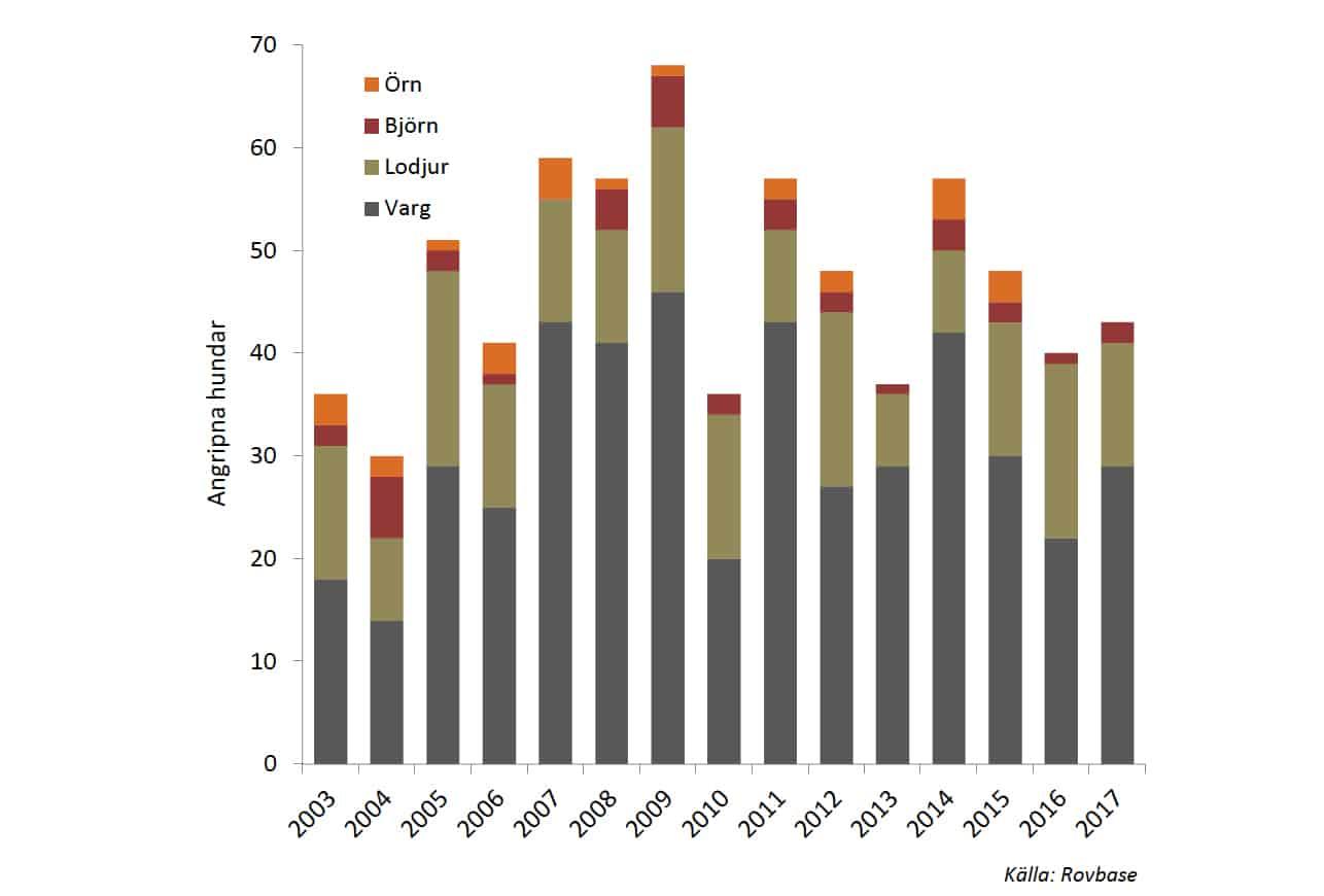 Antal hundar angripna av rovdjur 2003-2017.