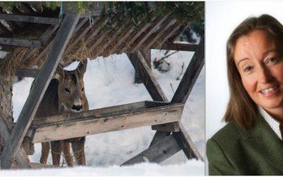 Jägarnas riksförbunds ordförande Solveig Larsson menar att stödutfodring stressar viltet mer än vad det hjälper.