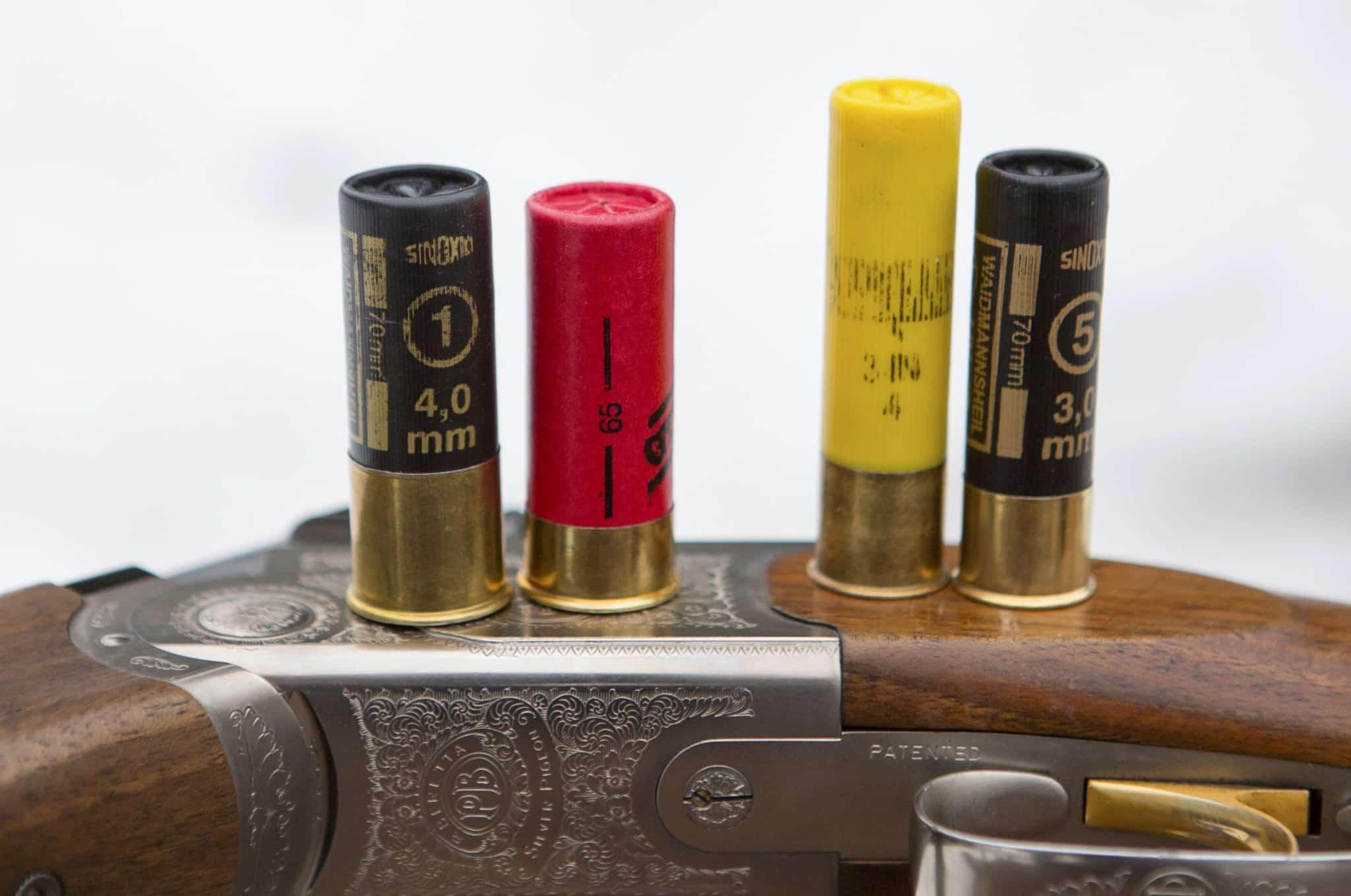 Några vanliga patronlängder, från vänster 12/70, 12/65, 20/76 och 20/70. Använder du båda kalibrarna måste du tänka på att inte förvara patronerna tillsammans, så att du undviker att ladda en patron i kaliber 20 i ett vapen i kaliber 12.