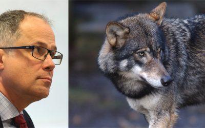 Torbjörn Larsson säger att Jägareförbundet varit mycket kritiska till hur vargförvaltningen skötts under alla år.