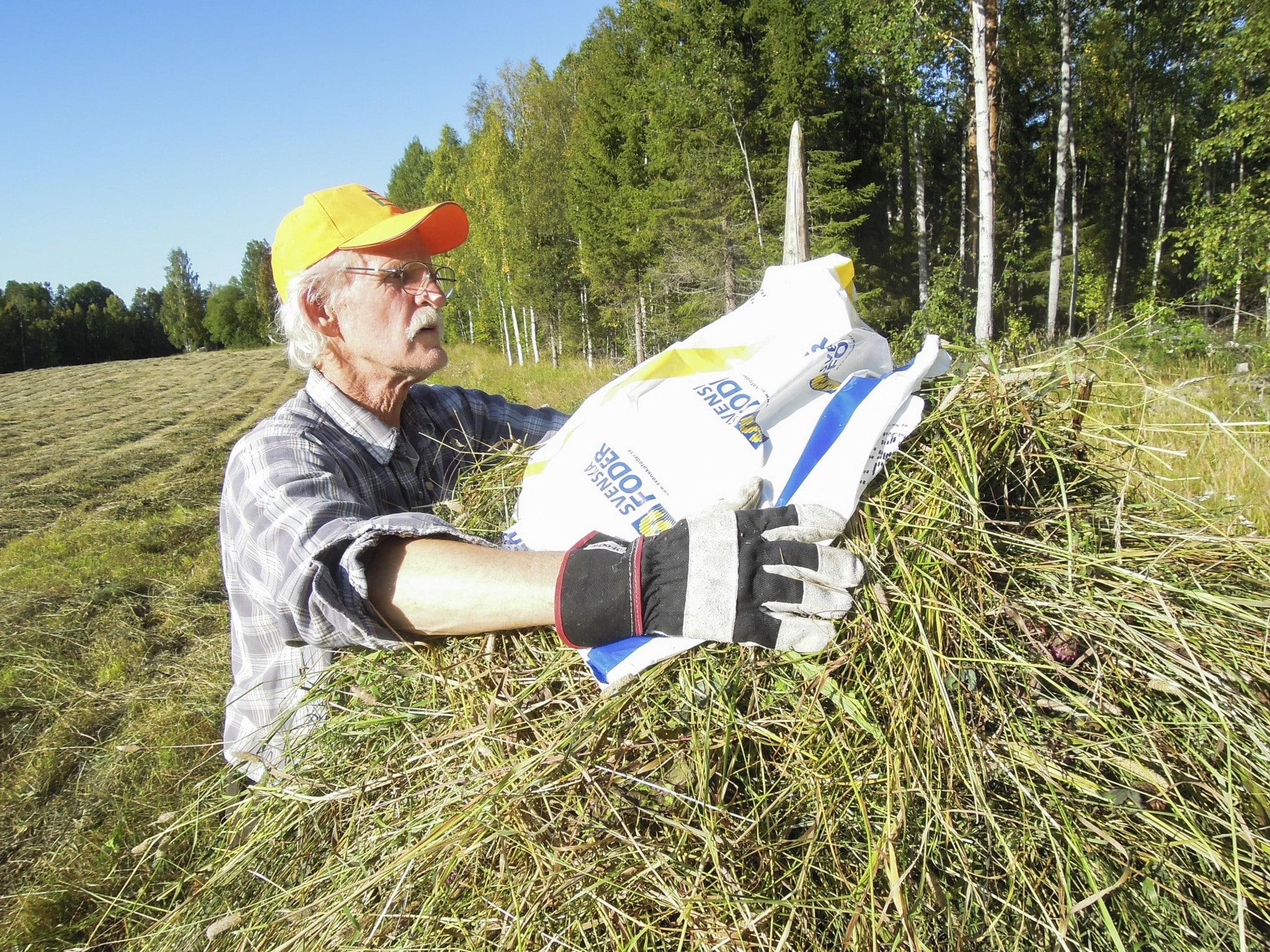 """Om man så vill kan foderstacken förses med en """"mössa"""" av exempelvis en uppskuren plastsäck. Foto:"""