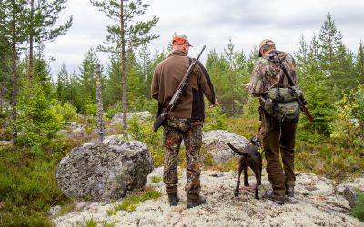 Den 21 augusti drar licensjakten på björn igång.