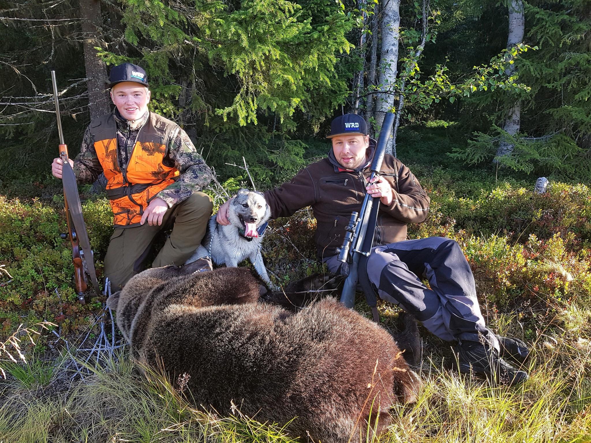 Skyttar Fredrik Ottosson Flykälen och 16-årige Lucas Strömberg Yxskaftkälen vilka inte gjorde något misstag när björnen kom på endast 20 meter. En hane på 125 kilo. Foto: Per Andersson