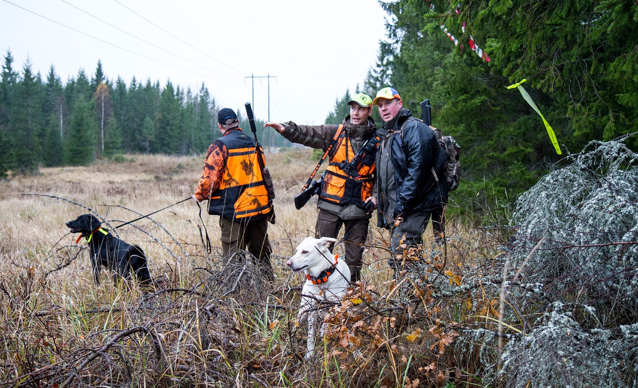 Jaktledaren måste föregå med gott exempel samt vara beredd att ingripa vid regelbrott.