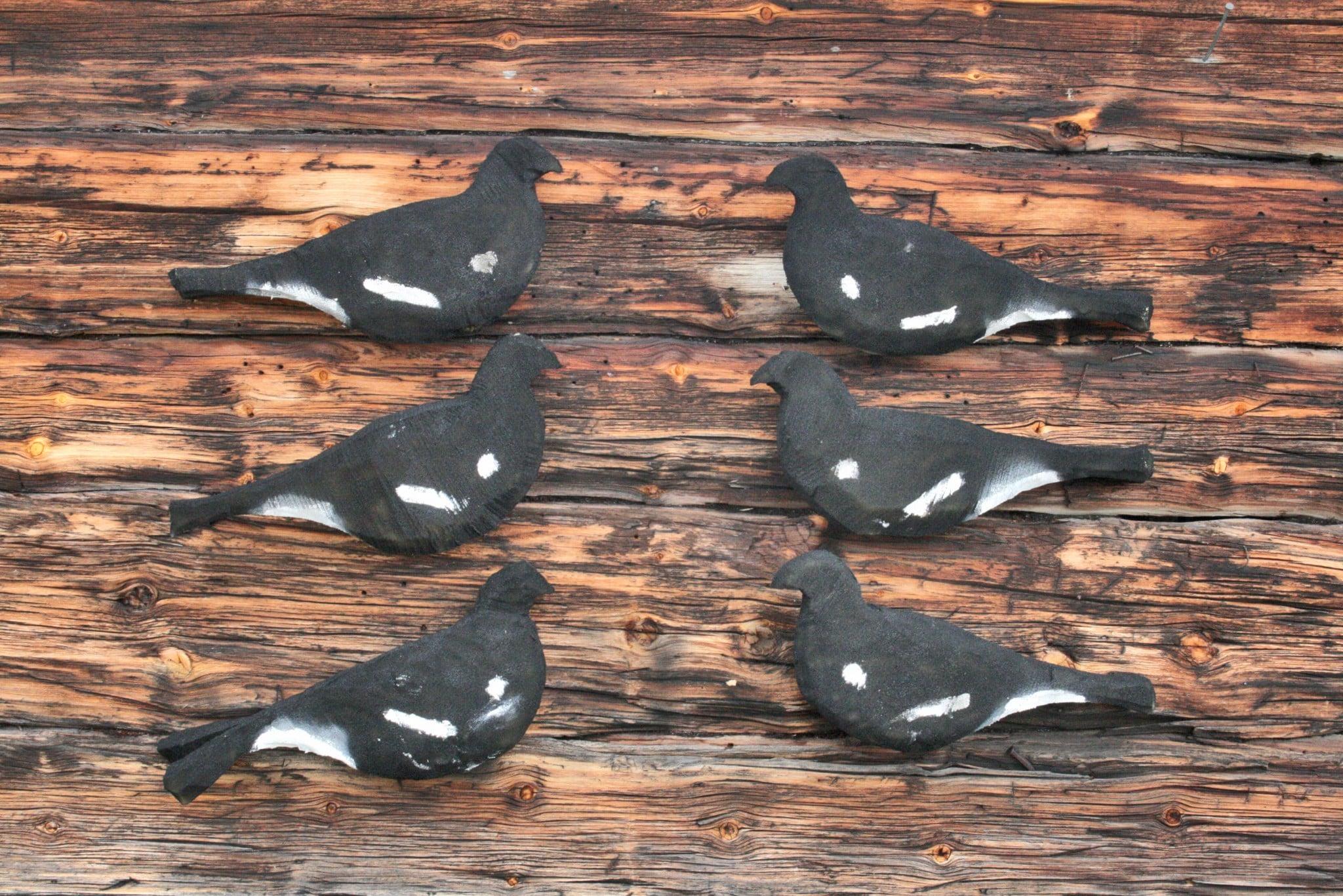 """Det är tämligen enkelt att tillverka en egen """"flock"""" orrbulvaner. De vita tecknen målas på med pensel och vanlig färg eftersom den vita sprayfärgen visat sig vara i tunnaste laget. Foto: Leif Lindqvist"""