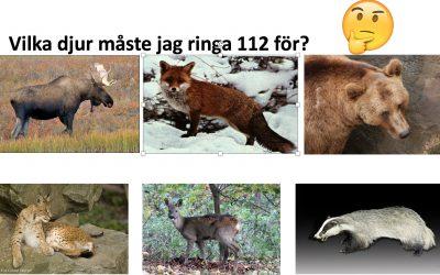 Med många bilder görs informationsmaterialet lättillgängligt för den som inte kan mycket svenska, eller som till och med inte kan läsa.