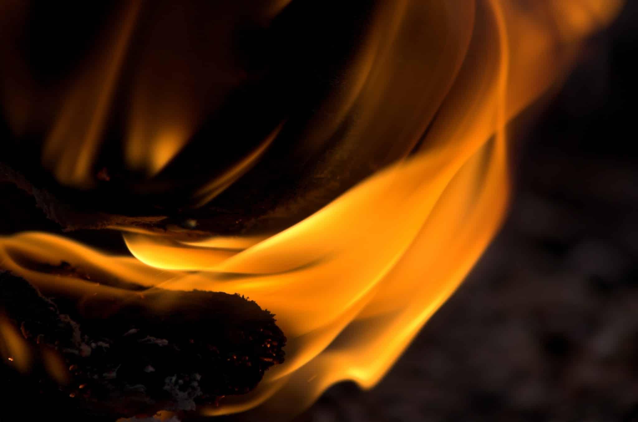 Åklagaren misstänkte att varg eldats upp en en värmepanna. Men polisens analys av askan från pannan visar inga spår av någon kremerad varg. Foto: Mostphotos