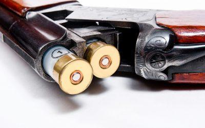 29-åringen uppgav för tingsrätten att någon stulit geväret och lagt det i bilen.