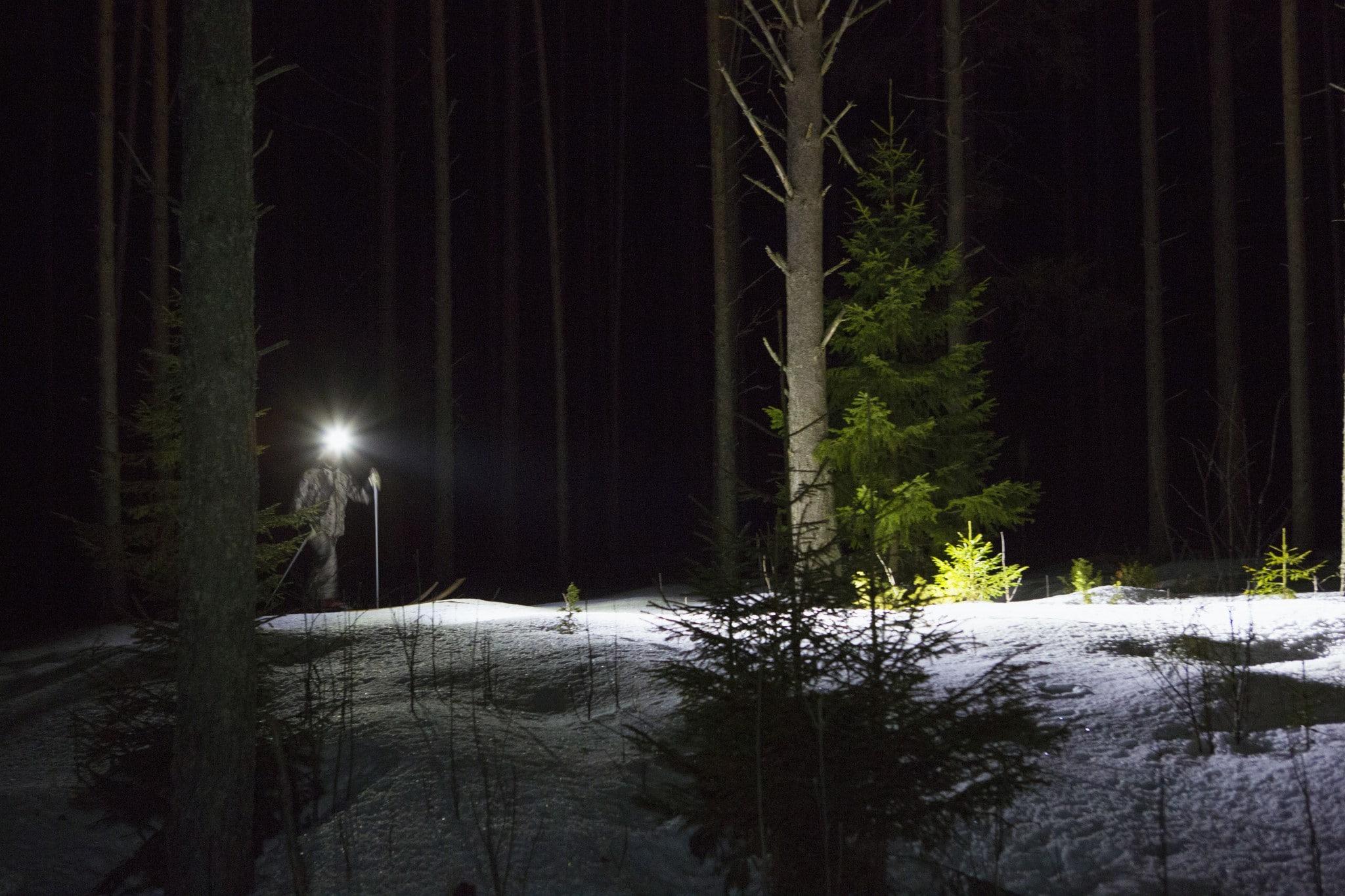 Många jägare är flitiga användare av pannlampor. Lamporna används på eftersök, men även i andra sammanhang, till exempel av jägare som ofta är kvar i skogen vid mörkrets inbrott. Foto: Ulf Lindroth