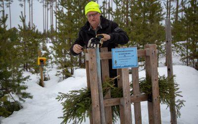 Naturbevakare Sone Persson vid en av länsstyrelsens viltkameror.