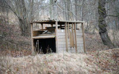 En rävfälla måste vittjas varje dag. Annars kan ägaren dömas för jaktbrott.