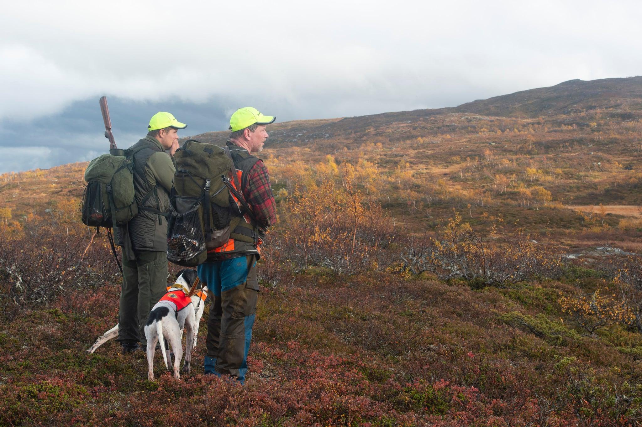 Sametinget vill se kraftiga inskränkningar i jakttiden på ripa.