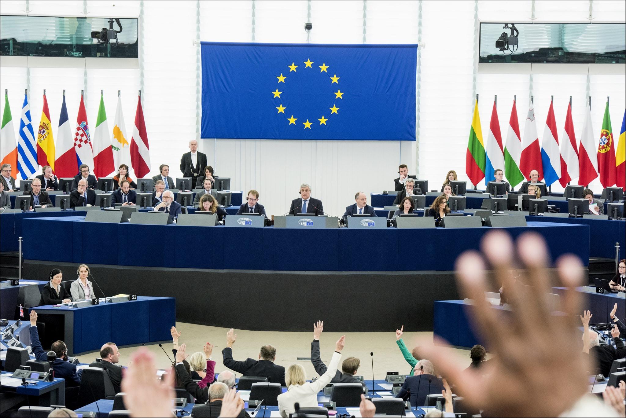 Omröstning i EU-parlamentet. Frågor som art- och habitatdirektiv har stor påverkan på den svenska jakten. Foto: Pietro Naj-Oleari