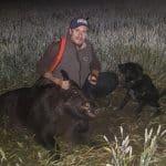 Lyckad jakt i vetefälten. I hundträningssyfte gjorde Tom Wistrand sedan ett kort dödsök på den store galten med sin gråwachtel Walter. Foto: Privat