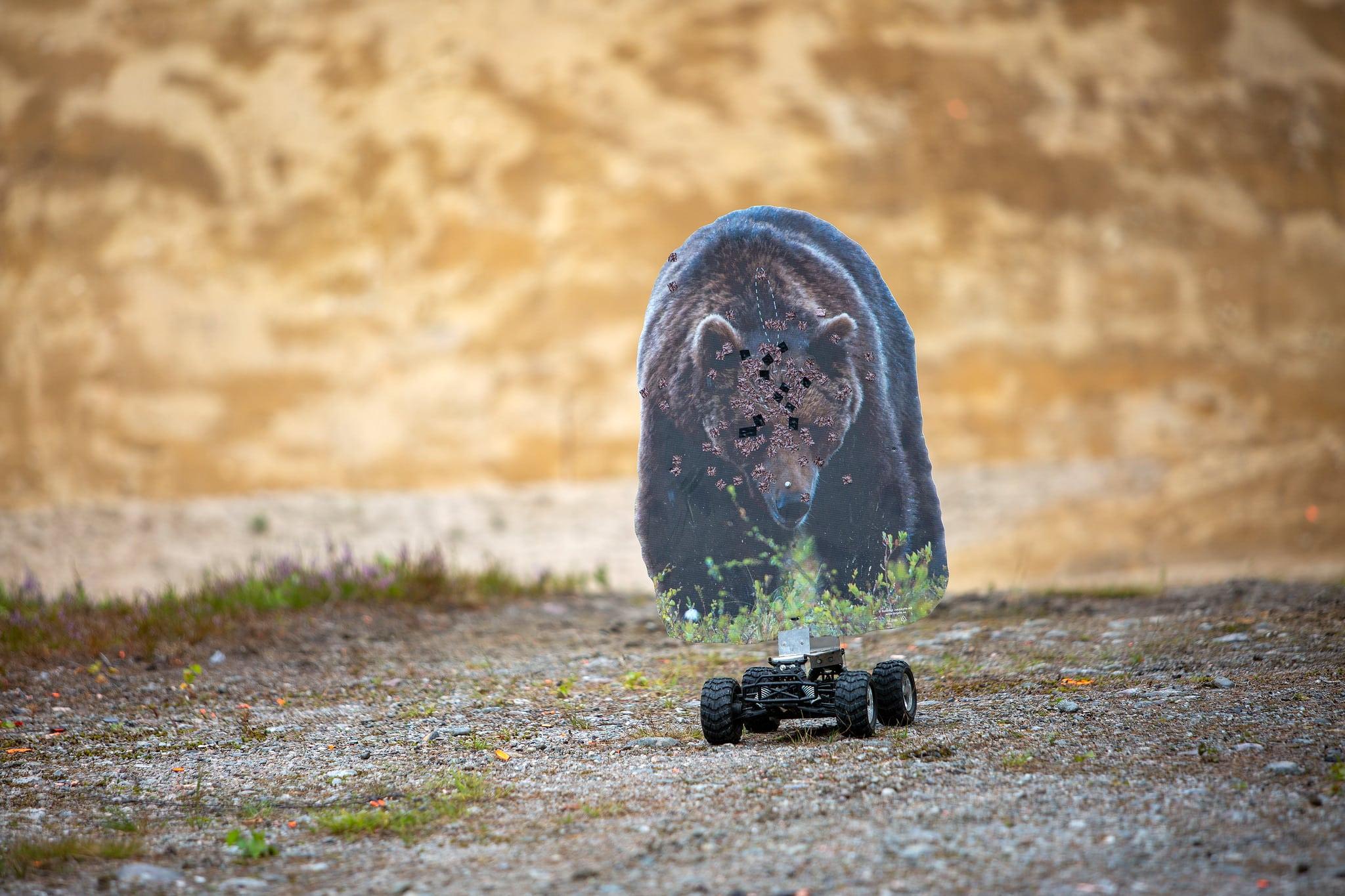 Realistiskt övningsskytte mot anfallande björn.