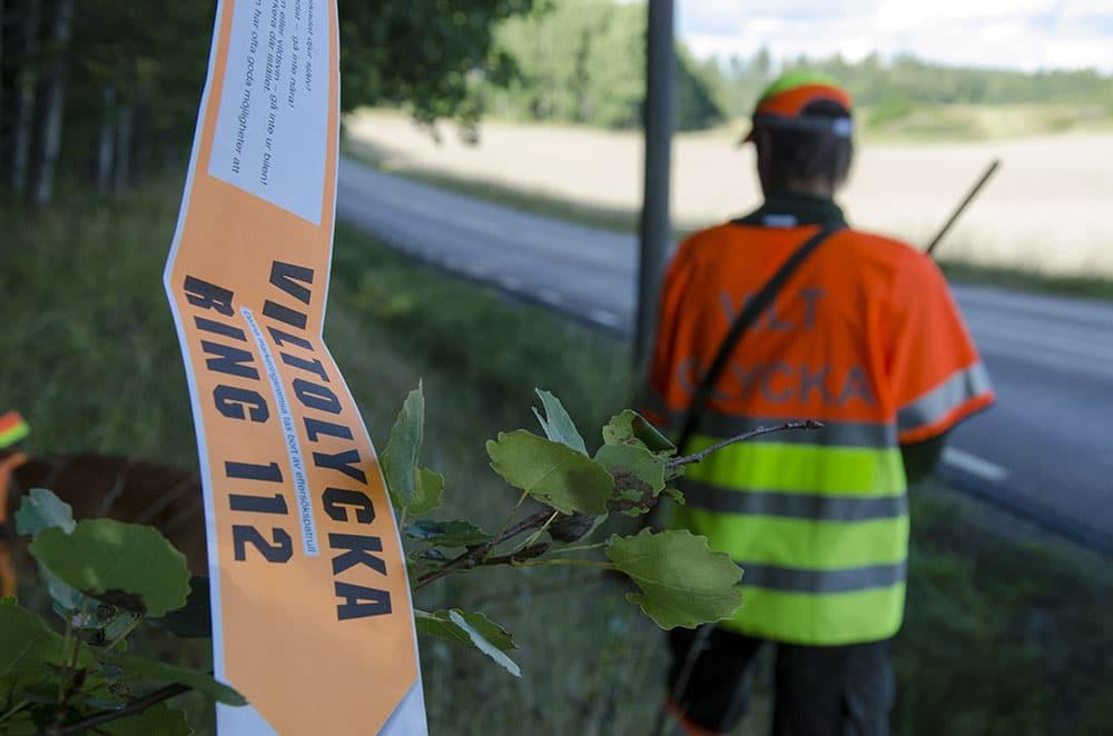 Den klart vanligaste orsaken till att eftersöken på trafikskadat vilt inte klaras upp är att bilisten inte märkt ut olyckplatsen. Foto: Martin Källberg