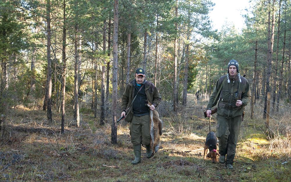 Gotländska rävjägare på väg hem efter en av förra årets lyckade jakter. Foto: Jan Henricson