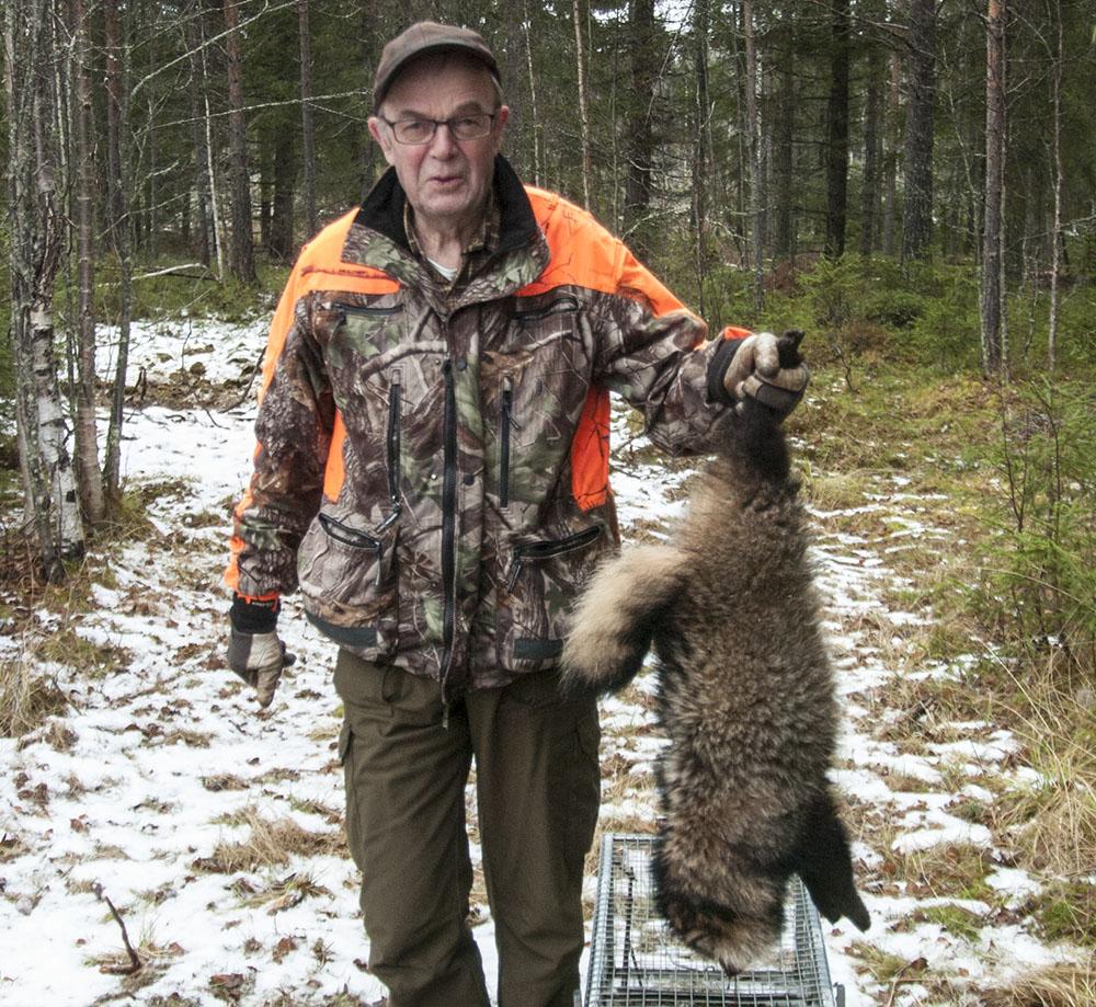 Calle Bohman med sin fångst, en mårdhundshane i vacker vinterpäls. Foto: Bernt Karlsson