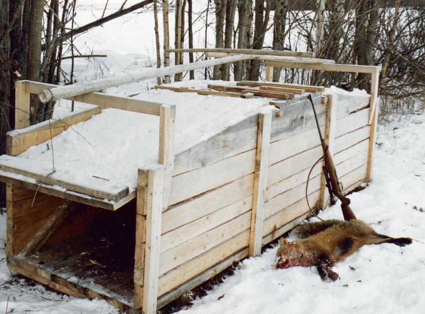 Fyndet av två omärkta rävfällor i Värmland har nu anmälts till polisen för misstänkt brott mot jaktlagstiftningen. Foto: Bernt Karlsson
