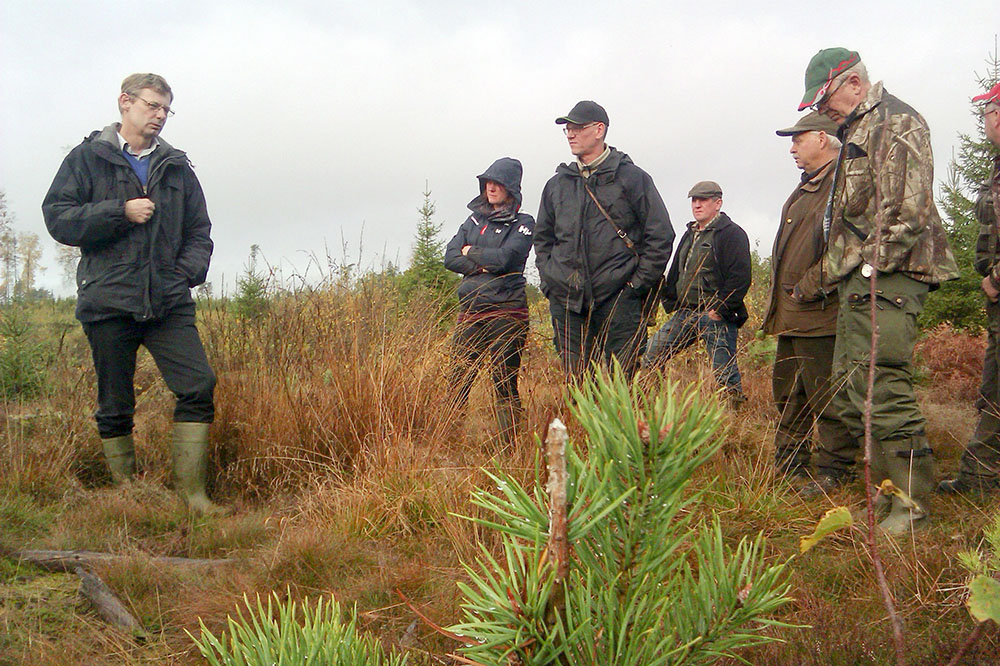 Exkursion på ett hård betat hygge leds av Jonas Bergquist, längst till vänster och Ronny Fihn, i mitten, från Skogsstyrelsen. Karl-Åke Lagerqvist, längst till höger, är markägarrepresentant i Älgförvaltningsgrupp 9, men även jägare. Foto: Lennart Appelqvist