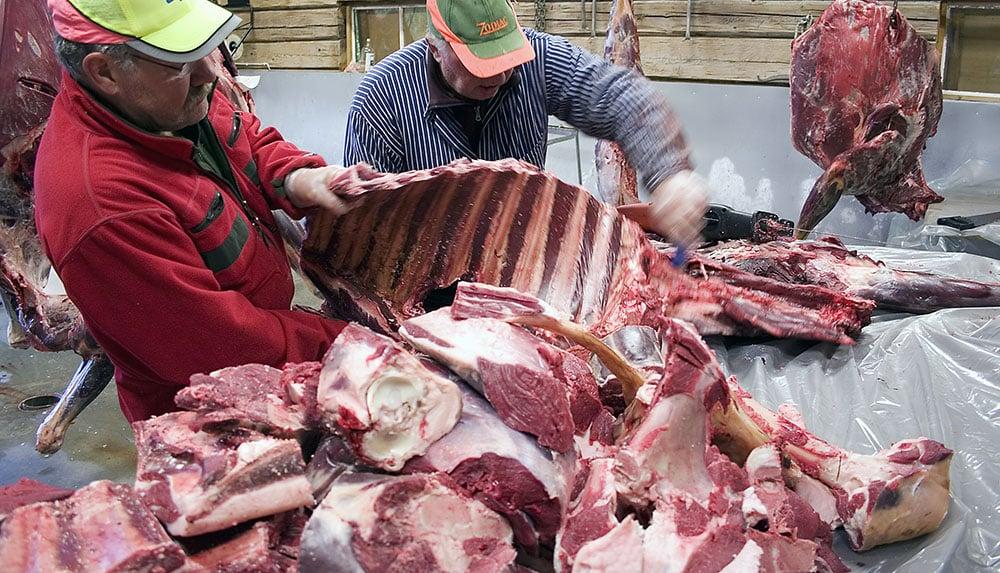 Störst samband med positiva attityder till jakt har konsumtion av viltkött. Det visar en avhandling från SLU. Foto: Olle Olsson