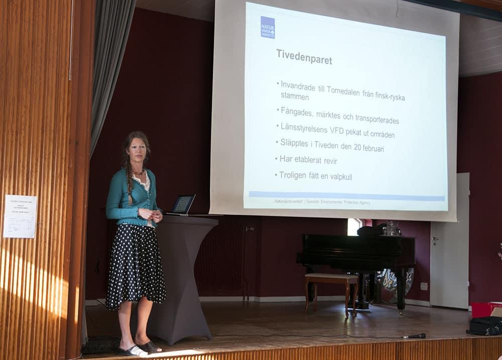 Naturvårdsverkets projektledare Helene Lindahl försöker förklara varför det var bra att flytta ett vargpar från Tornedalen till Tiveden vid ett stormöte utanför Karlsborg förra året. Foto: Jan Henricson