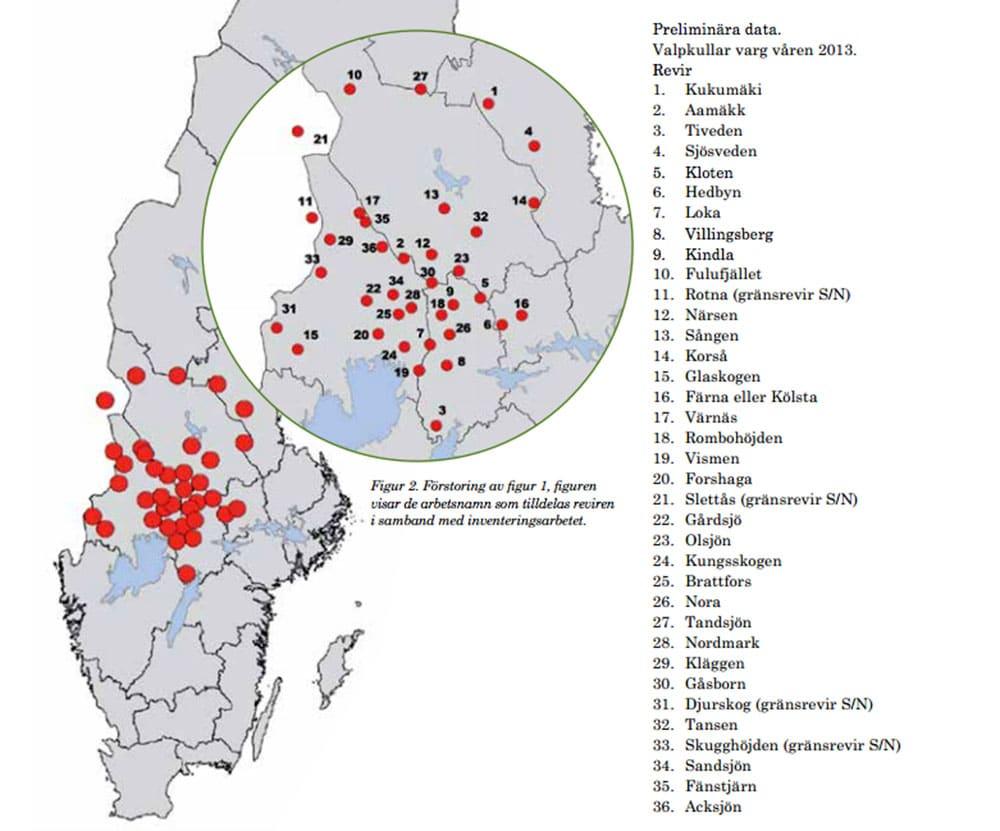 Preliminär rapport om vargföryngringar förra året. Källa: Viltskadecenter