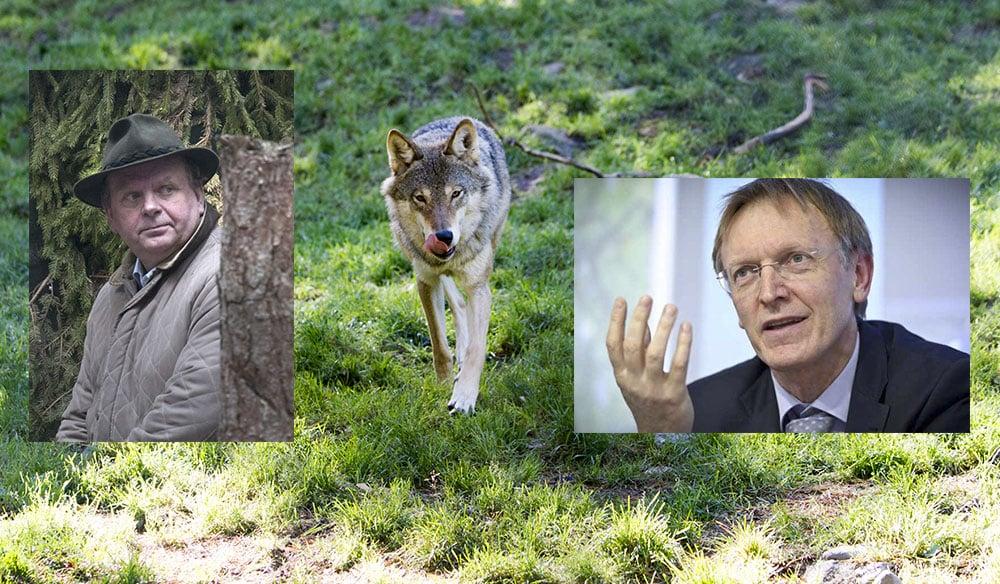 EU-kommissionären Janez Potočnik har synpunkter på den svenska rovdjursförvaltningen. Landsbygdsminister Eskil Erlandsson ger ger regeringens inställning i vår webbradio.