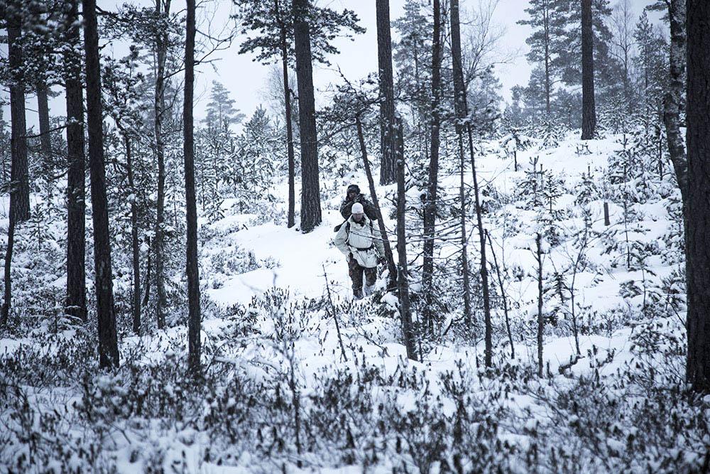 Jägarna har under tolv dagar lagt ner ett enormt arbete för att nå resultat. Foto: Olle Olsson