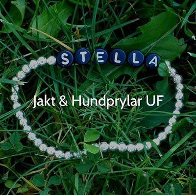 Bland annat Stella-armband säljs av det nystartade UF-företaget. Foto: Emelie Olén