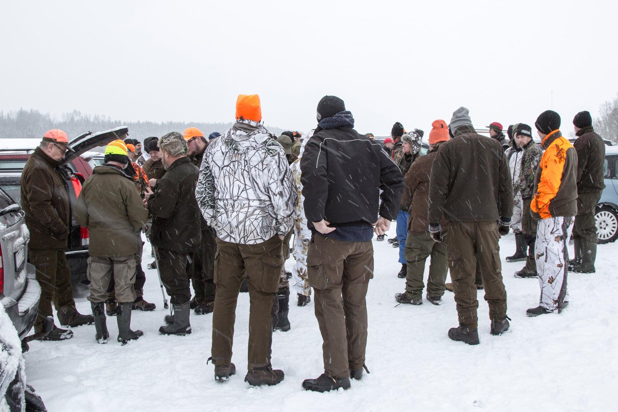 De jägare som drabbades av det felaktiga myndighetsbeslutet att stoppa vargjakten kräver nu ersättning för resor, stughyror med mera. Foto: Olle Olsson