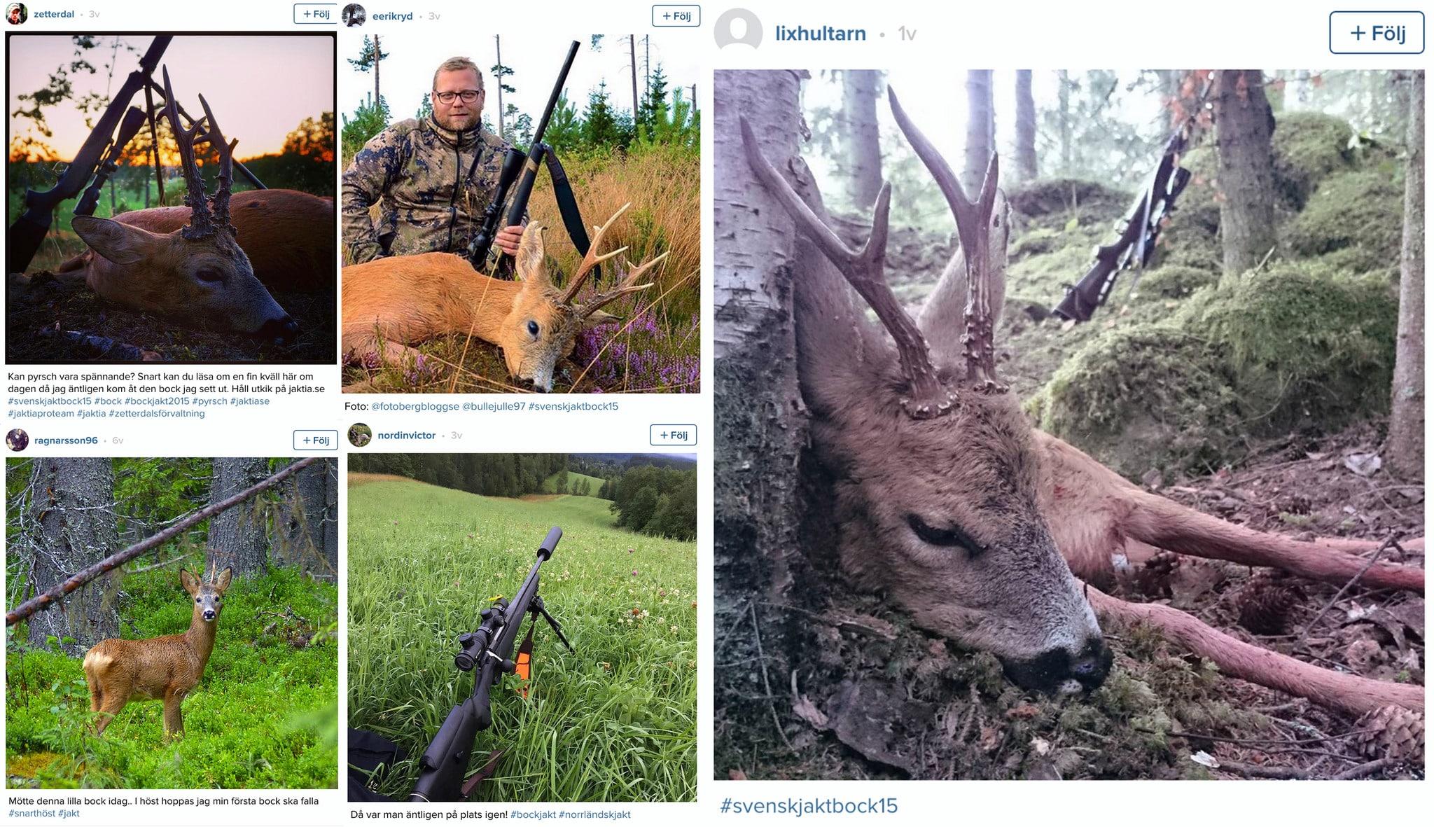 Fem vinnare från Svensk Jakts Instagramtävling #svenskjaktbock15.