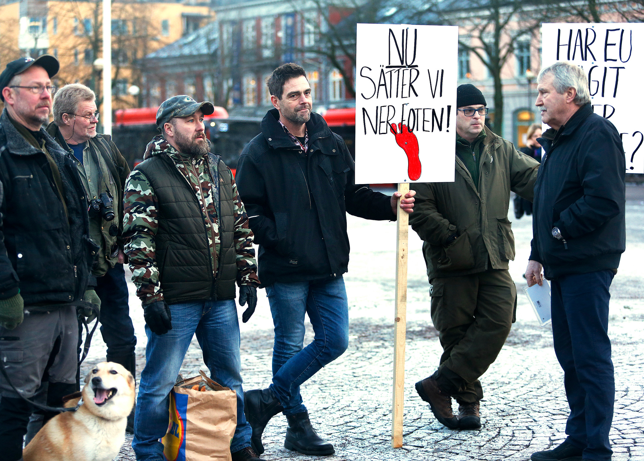 På lördag kommer det att demonstreras mot den ej fungerande vargpolitiken på tre platser: Karlstad, Torsby och Örebro. Foto: Linn Malmén
