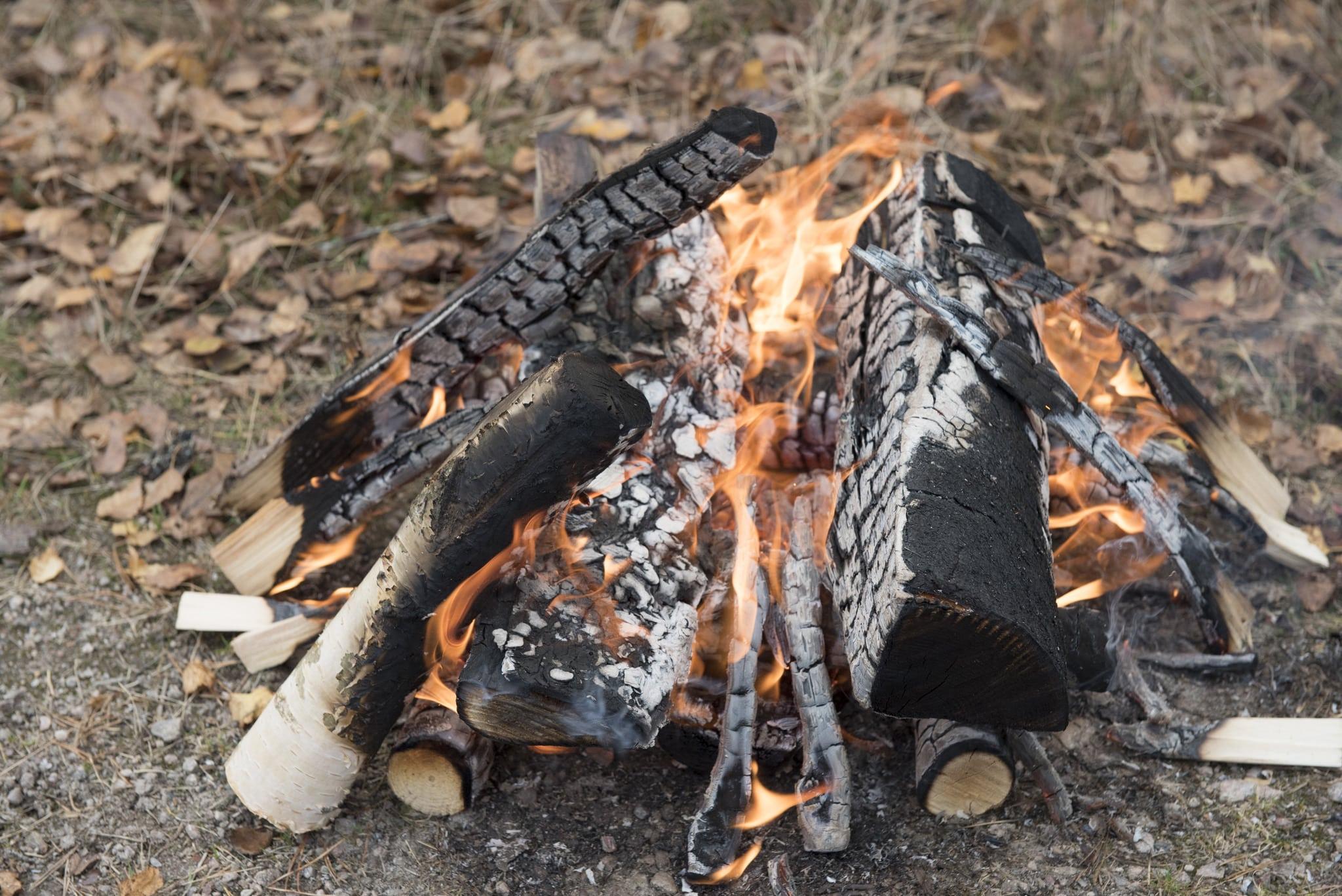 Med hjälp av eld ska kritiken mot den förda rovdjurspolitiken uppmärksammas. Foto: Jan Henricson