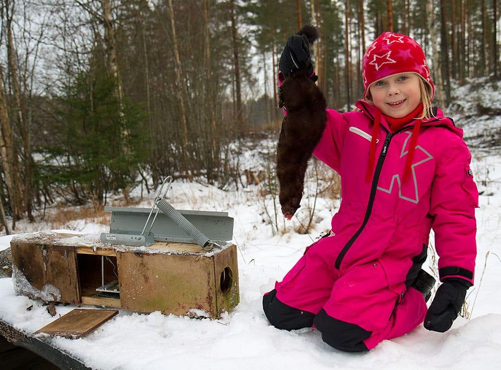 Ung jägarlycka när en mink fångats i en så kallad Ihjäl-fälla. Foto: Olle Olsson