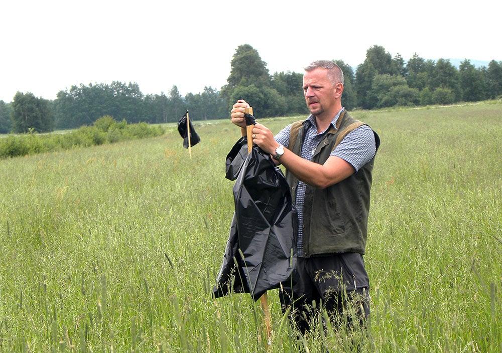 Mikael Att sätta upp sopsäckar är en mycket enkel och billig viltvårdsåtgärd som sparar många kid i slåttertider. Foto: Privat