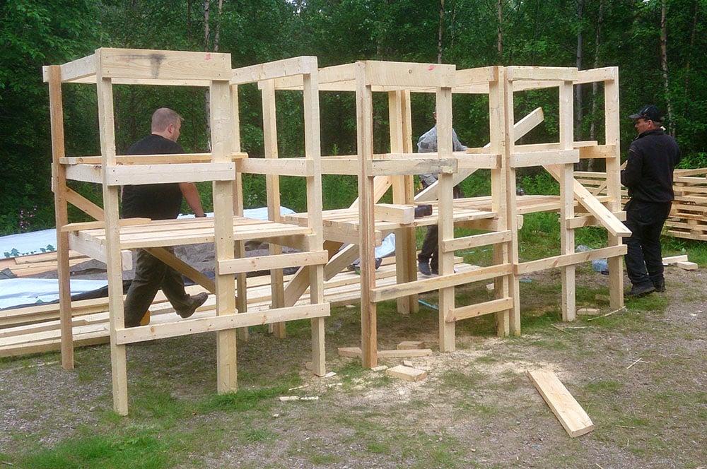 Genom att hjälpas åt och bygga flera älgtorn samtidigt går arbete snabbare. Foto: Olle Olsson