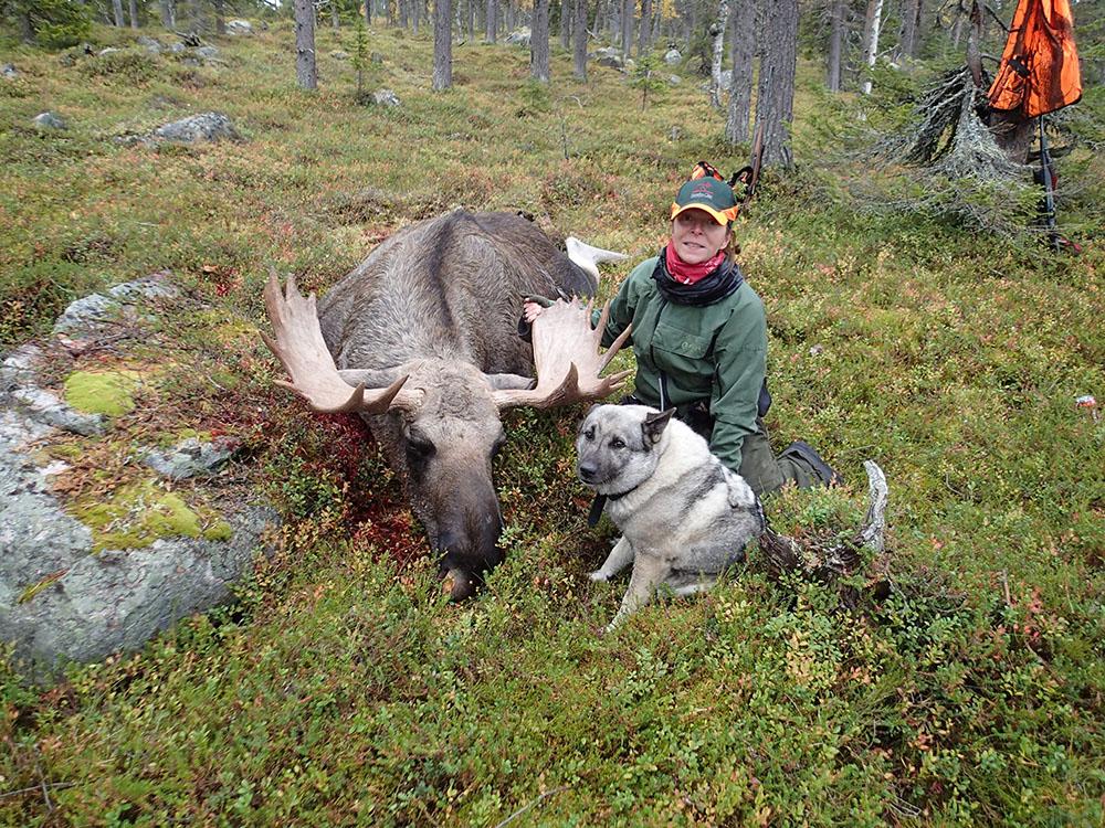 På Pia Rönnqvists första älgjaktsdag lyckades hon fälla denna udda 20-taggare.