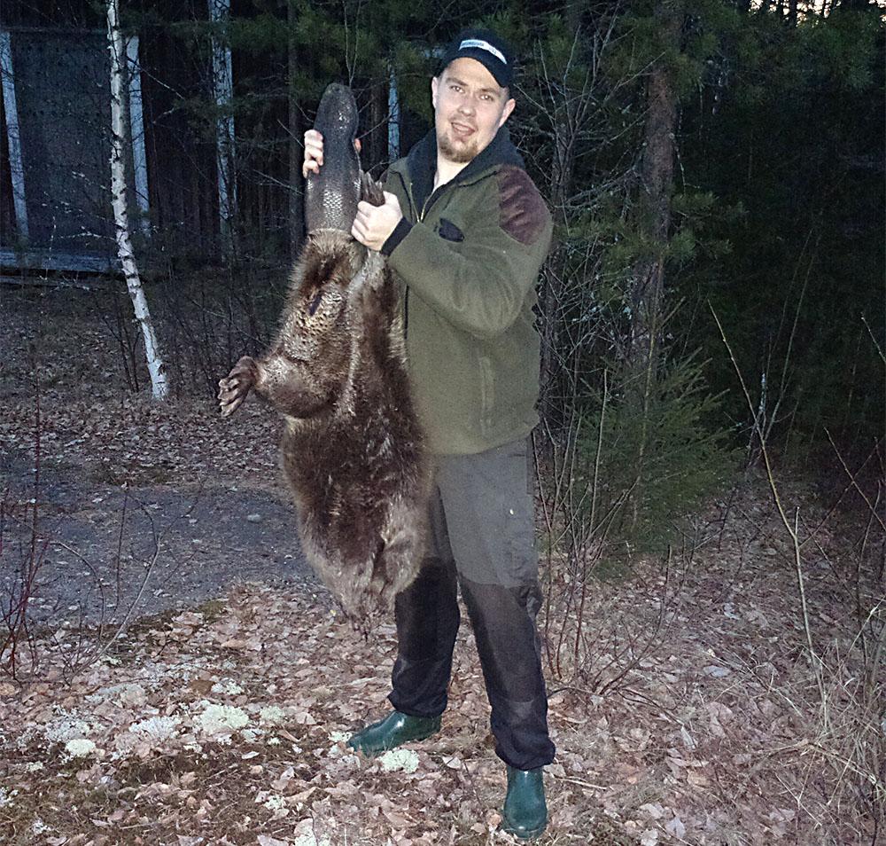 Peter Jonsson fällde en bäver på 27 kilo i Västerbotten. När han släpade den genom igenväxt blötmark lovade han sig själv att aldrig fälla en så stor bäver igen. Foto: Privat