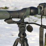 Swarovski 25-60x65 är en smidig tubkikare men ganska ljussvag. En tung systemkamera som Nikon D3s gav bakvikt medan den lättare Nikon D600 passade bättre. Foto: Mattias Lilja