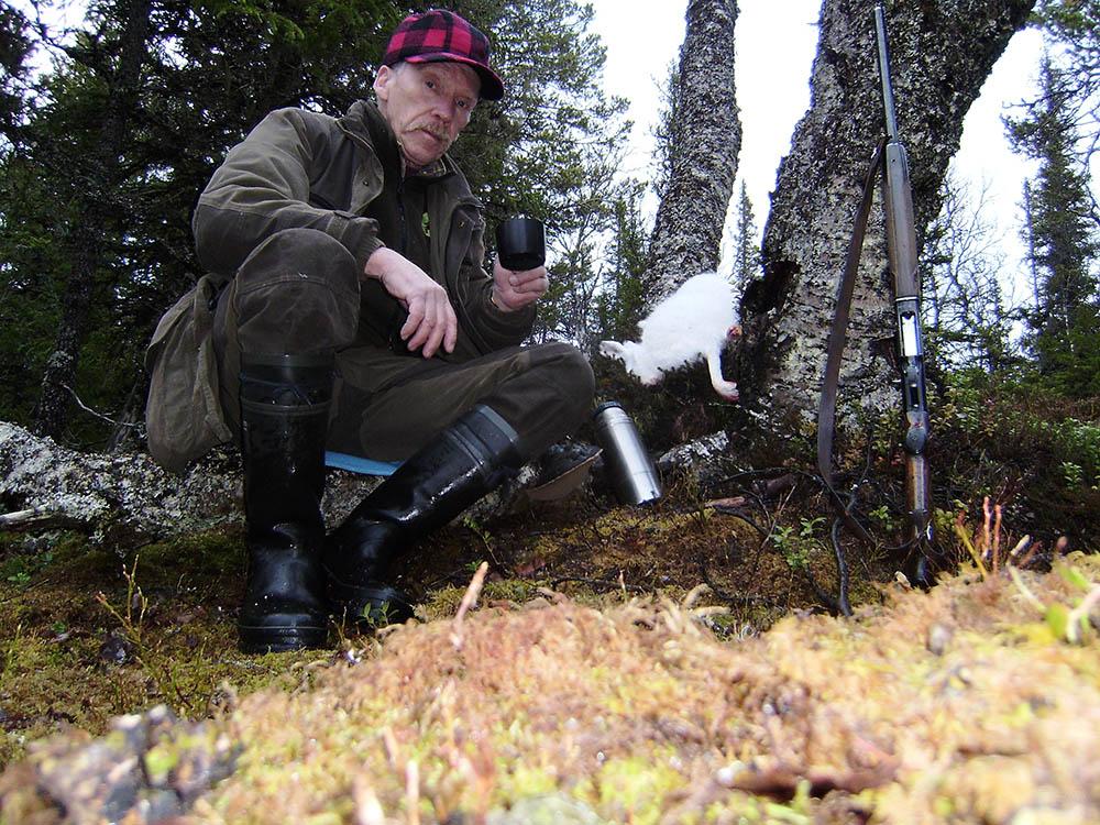 Jakten i Handölstrakten i Jämtland har under de senare 25 åren legat debattören Kurt Ericson varmt om hjärtat. Haren är skjuten för hans schillertik Slåtteråsens Tea (Stella). Foto: Privat