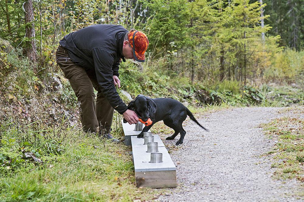När hunden markerar rätt burk belönas den.  I det här fallet med en pipleksak. Använd helst inte godis som belöning eftersom risken då finns att hunden intresserar sig mer för dina fickor än för den uppgift du vill att den ska lösa. Foto: Olle Olsson